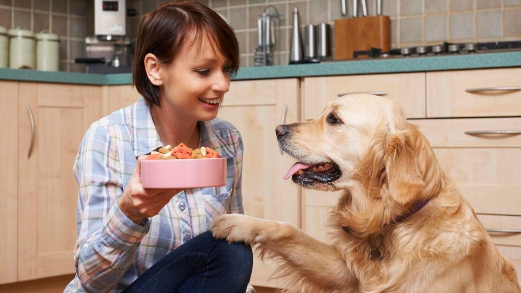 What Can Dogs Not Eat?