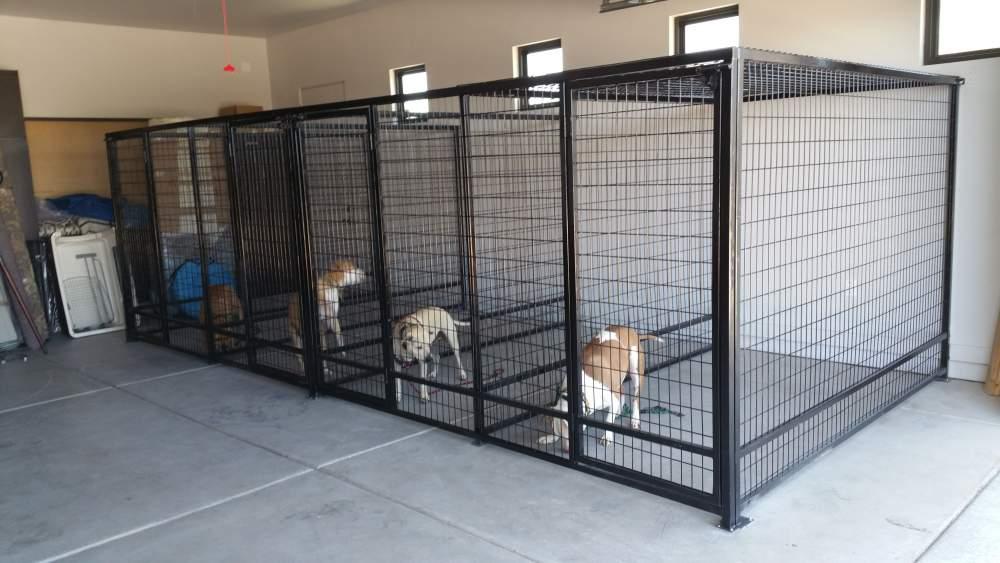 dog boarding house
